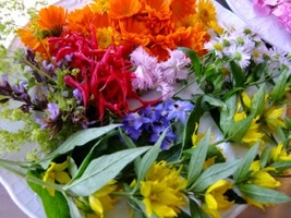 Kwiaty w Twojej codziennej... diecie!