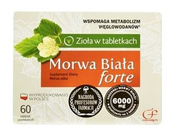 Morwa Biała