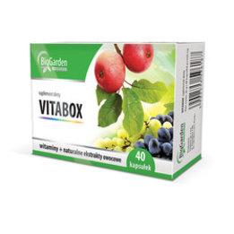 BigGarden VitaBox